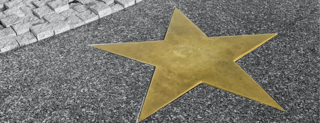 Gold Star from environmental client for Nijman Franzetti Chicago environmental attorneys.